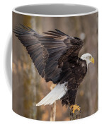 Eagle Landing On Perch Coffee Mug