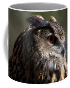 Eagle Owl 4 Coffee Mug