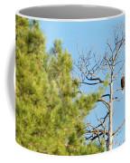 Eagle Perch Coffee Mug