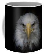 Eagle Stare Coffee Mug