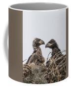 Eaglets Having A Chat Coffee Mug
