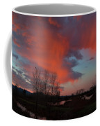 Early Dawn In The Wetlands Coffee Mug