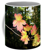 Early Days Of Autumn Coffee Mug