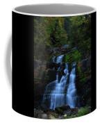 Early Morning Falls Coffee Mug