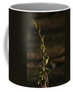 Early Morning For American Golden Finch Coffee Mug