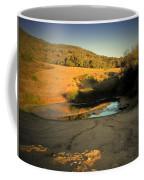 Early Morning Pond Coffee Mug