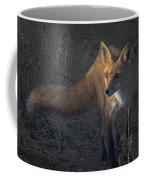 Early Morning Red Fox Prowl Coffee Mug