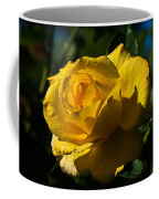 Early Morning Rose Coffee Mug