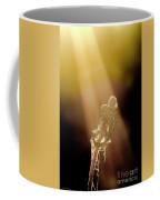 Early Morning Sun Bath Coffee Mug