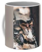 Earthen #2 Coffee Mug