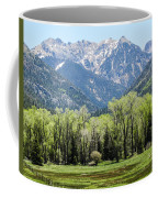 East Fork Mountain Valley Coffee Mug