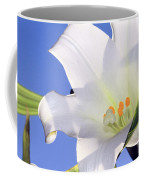 Easter Lily Back Lit By The Sun  Coffee Mug