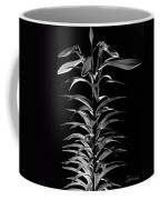Easter Lily One Coffee Mug