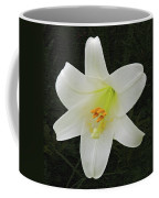 Easter Lily With Black Background Coffee Mug
