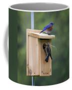 Western Blue Bird Coffee Mug