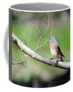 Eastern Bluebird Coffee Mug by George Randy Bass