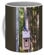 Eastern Bluebird Perched On Birdhouse 2 Coffee Mug