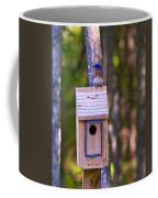 Eastern Bluebird Perched On Birdhouse 4 Coffee Mug