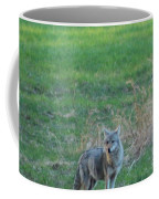 Eastern Coyote In Grass Coffee Mug