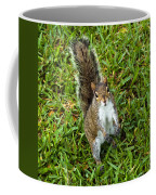 Eastern Gray Squirrel Coffee Mug