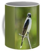Eastern Kingbird Stare Coffee Mug