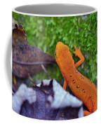 Eastern Newt Coffee Mug