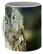 Eastern Screech Owl-6950 Coffee Mug
