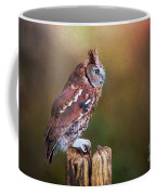 Eastern Screech Owl Red Morph Profile Coffee Mug