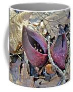 Eastern Skunk Cabbage Spathes - Symplocarpus Foetidus Coffee Mug