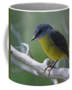 Eastern Yellow Robin Coffee Mug