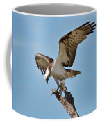 Eating Osprey-1 Coffee Mug by Rudy Umans