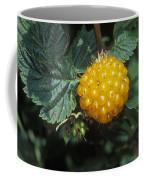 Edible Yellow Salmonberry Rubus Coffee Mug by Rich Reid