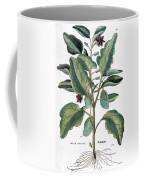 Eggplant, 1735 Coffee Mug