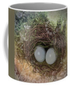 Eggs In A Nest Coffee Mug