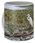 Egret And Turtles Coffee Mug