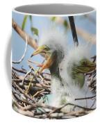 Egret Chicks In Nest With Egg Coffee Mug