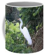 Egret In A Tree Coffee Mug