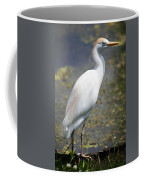 Egret Or Crane Coffee Mug