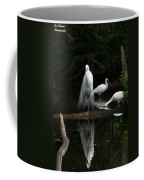 Egret Reflection Coffee Mug