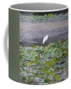 Egret Standing In Lake Coffee Mug