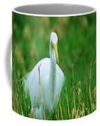 Egret Stare Down Coffee Mug