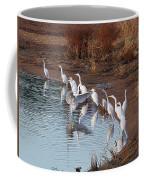 Egrets Gathering For Fishing Contest. Coffee Mug