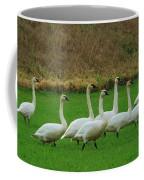 Eight Beautiful Swans Coffee Mug