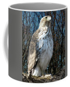 Elder Hawk Coffee Mug