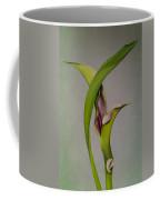 Elegant Calla Buds Coffee Mug