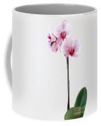 Elegant Orchid Coffee Mug