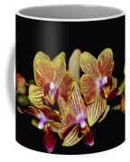 Elegant Orchid On Black Coffee Mug