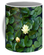 Elegant Water Lily Coffee Mug