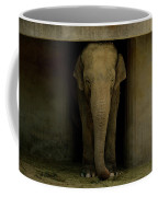 Elephant #1 Coffee Mug