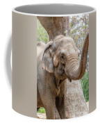 Elephant And Tree Trunk Coffee Mug
